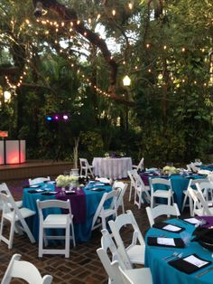 Outdoor Reception at the Selby Gardens!