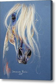Magic White Arabian Acrylic Print By Paulina Stasikowska More Pferde in Kunst & Bildern :-) Horse Drawings, Animal Drawings, Art Drawings, Horse Artwork, Art Abstrait, Pastel Art, Equine Art, Animal Paintings, Painting & Drawing
