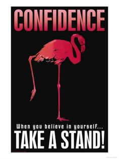 Confidence Flamingo -- yet I find that leg very ungraceful;