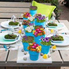Een vrolijke (paas)tafel zoals deze maak je met deze kleurrijke voorjaarbloeiers. #Intratuin #tafel #planten #bloemen #buiten #voorjaar #vrolijk