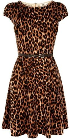 Oasis ~ Animal Belted Fit & Flare Dress