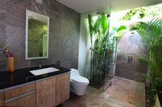 Love the plants in shower