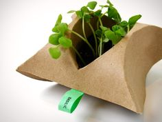 --G'erme is a fully biodegradable germinator.