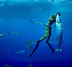 Watch out for the sharks... #reellife #letsgetreel #spearfishing #wahoo #sharks #diving #freediving (Photo Credit: @diving.the.world)
