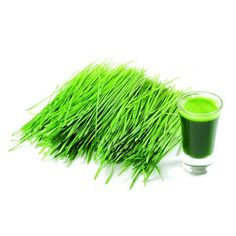 31 Healthy, Vegetable Wheat Grass Special Juicer Recipes You'll Love 3 Superfoods, Wheatgrass Powder, Wheat Grass Shots, Growing Wheat Grass, La Constipation, Barley Grass, Juicer Recipes, Juice Smoothie, Diet Recipes