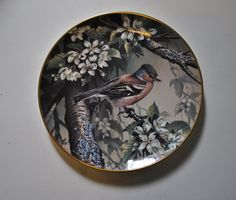 Wedgwood for RSPB Centenary Bird Plate Collection: Chaffinch - Artist: Terance James Bond