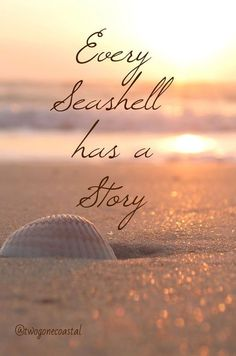 Every seashell has a story. Create your stories at the beach. Visit Inn at the Beach in Venice, Florida Sunset Beach, Beach Bum, Ocean Beach, Ocean Quotes, Beach Quotes And Sayings, Seaside Quotes, Quotes Quotes, Beach Qoutes, Crush Quotes