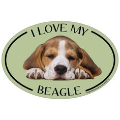 Imagine This Oval Magnet, I Love My Beagle * See this great image  : Dog Memorials