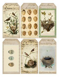 Vintage Bird-Inspired tags.Free printable