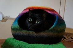 I have to knit a cat cocoon! Free pattern from Ravelry!