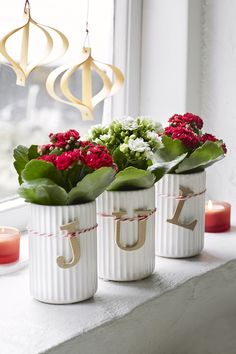 Queen Flowers, Kalanchoe. Styling and photo Anna Overholdt, annaoverholdt.dk
