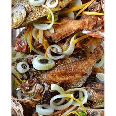Here, the recipe Jamaican Escovitch Fish Jamaican Escovitch Fish Recipe, Fish Recipes Jamaican, Jamaican Cuisine, Jamaican Dishes, Jamaican Party, Haitian Recipes, Whole Red Snapper Recipes, Whole Fish Recipes, Jamacian Food