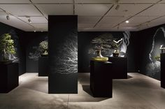 BONSAI Exhibition | WORKS | HARA DESIGN INSTITUTE