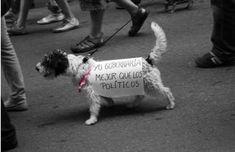 Los 21 carteles de protesta más ingeniosos de la historia Protest Posters, My Love, Dogs, Animals, Social, Ideas Para, Revolution, Website, Quotes