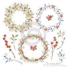 Holly berries, Branches, Red Berries. Hand drawn watercolor images isolated on white