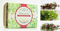 mikrozold-ultetocsomag-fuszeres-mix Minion, Art, Art Background, Kunst, Minions, Performing Arts, Art Education Resources, Artworks