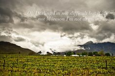 Franschhoek home to Môreson and Miss Molly Wines. Jewell & Co Charcuterie. The Orchid. Orchid Nursery, Happy Valley, Charcuterie Board, Number One, Welcome, Wines, South Africa, Vineyard, Places To Go