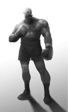 boxer.jpg (734×1200)