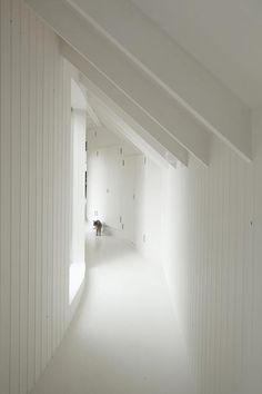 Tree House by 6a Architects I like the interior white corridor cladding here... and then, I think it's an amazing use of a long urban garden... GR