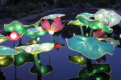 St.Louis Botanical Garden (Chinese Festival) St Louis Botanical Garden, Botanical Gardens, Chinese Festival, Public Garden, Sweet Home, Heart, Home Decor, Decoration Home, House Beautiful