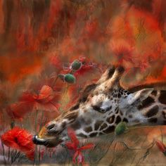 Carol Cavalaris   MIXED MEDIA