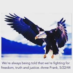 I've been fighting for freedom for more than a decade. Anne Frank Quotes, Truth And Justice, Fight For Freedom, A Decade, Bald Eagle