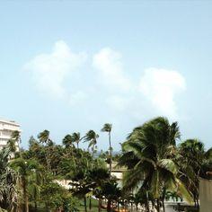 Enjoying the tropical view from our Main Building 3rd floor. @caribehilton1 #CaribeHilton #PuertoRico #seepuertorico