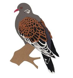 Turtle Dove papercut by Turtle Dove, Paper Animals, Paper Cutting, Rooster, Bird, Handmade, Hand Made, Birds, Roosters
