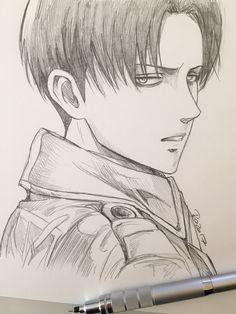 Levi Ackerman, ladies and gentlemen. Art Manga, Art Anime, Manga Drawing, Manga Anime, Drawing Art, Anime Drawings Sketches, Anime Sketch, Art Drawings, Levi Ackerman