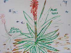 dessin d'un aloe vera par Elize, aux feutres http://www.pigmentropie.fr