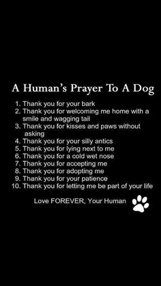 Prayer to my doggy