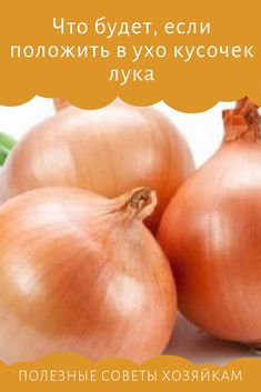 Onion, Health Fitness, Vegetables, Food, Vegetable Recipes, Eten, Veggie Food, Health And Fitness, Fitness
