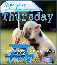 Hope your Thursday was Happy and Friday's a blast!