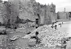 Orange piles at Damascus Gate, May Palestine History, Israel History, Old Pictures, Old Photos, Damascus Gate, Jaffa Israel, Old City Jerusalem, Naher Osten, Dome Of The Rock