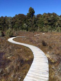 Fjordland Nationalpark im November 2015 - Naturwunder Neuseeland Reise
