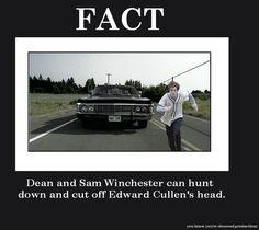 Supernatural Vs. Twilight hahahahahaha.... this is soooo true!!!!!!!!
