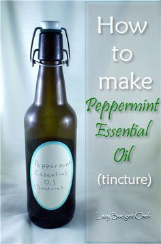 Lazy Budget Chef: How to Make Peppermint Essential Oil (Tincture)