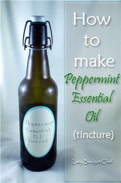 How to Make Peppermint Essential Oil (Extract)/ Como fazer oleo esencial de hortelã