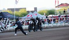 20 Best Law Tigers 2017 Arizona Mile AFT Championship Race