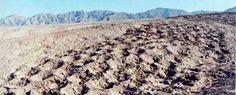 El misterio del geoglifo más grande de Perú