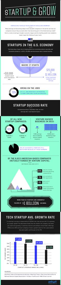 infographic startup and grow