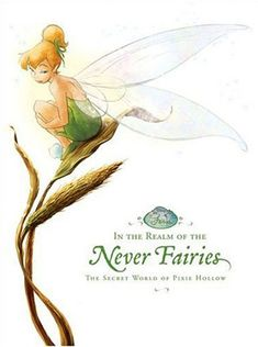 In the Realm of the Never Fairies: The Secret World of Pixie Hollow (Disney Fairies) (Monique Peterson) Tinkerbell And Friends, Peter Pan And Tinkerbell, Disney Fairies, Disney Love, Disney Magic, Disney Art, Disney Girls, Walt Disney, New Fantasy
