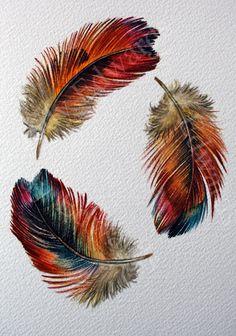 Three Feathers Rainbow feathers watercolor study от jodyvanB