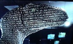 How in Jurassic Park, what is being projected onto the raptor is the sequence for DNA.