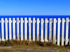 Happy Fence Friday:Cape Spear Edition by carliewired, via Flickr