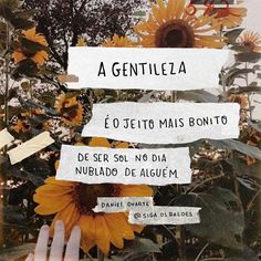 Pétalas Solt as Some Quotes, Daily Quotes, Words Quotes, Portuguese Quotes, Frases Humor, Typography Quotes, Good Vibes, Cool Words, Quote Of The Day