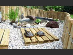 Tortoise Enclosure, Garden Pond, Outdoor Furniture Sets, Outdoor Decor, Future House, Stepping Stones, Aquarium, Backyard, Home Decor