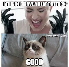 """Grumpy Cat vs Demi Lovato in """"Heart Attack"""" Grumpy Cat Quotes, Angry Cat Memes, Grump Cat, Funny Grumpy Cat Memes, Cat Jokes, Stupid Funny Memes, Funny Relatable Memes, Funny Cats, Hilarious"""