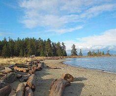 Rathtrevor Provincial Park - Parksville BC Vancouver Island, Vacation Destinations, Us Travel, Wander, Beaches, Victoria, Camping, Explore, Park