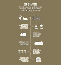 Brasileiro desenvolve uma tecnologia inovadora  para a produção de biogás